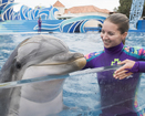 SeaWorld offers free admission to military