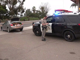 Driver in OC-to-SD pursuit taken into custody