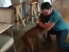 Dog that jumped out of car reunited with owners