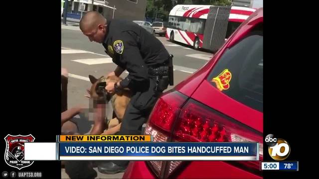Graphic video of San Diego Police K9 bite is concerning