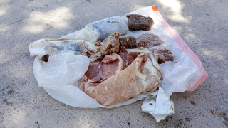 Florida mystery: Frozen pork falls from the sky