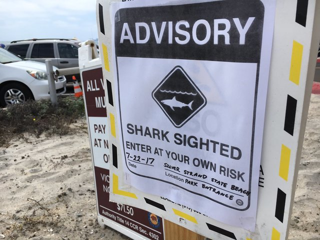 Advisory issued after shark sighting at Silver Stand State Beach