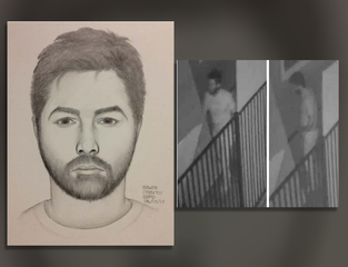 Woman sexually assaulted in Little Italy home