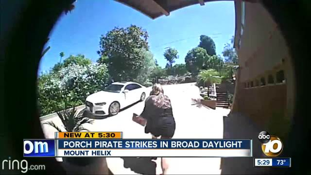 Porch pirate strikes in broad daylight