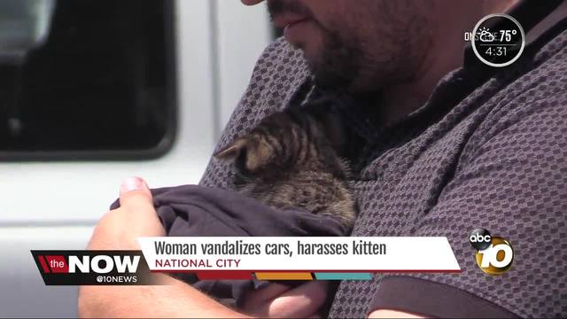 SDPD- Woman vandalizes cars- harasses kitten