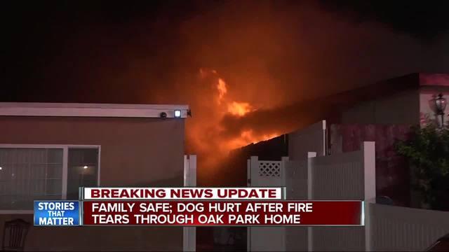 Family flees Oak Park house fire- dog injured