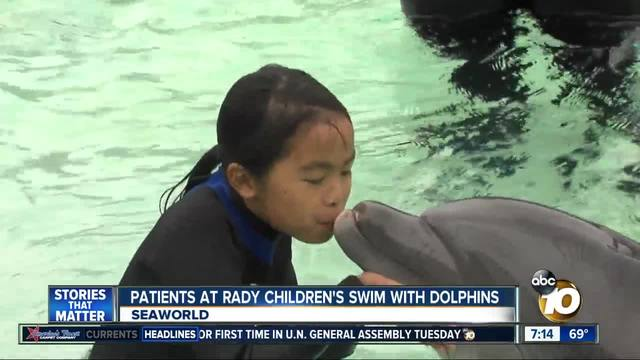 Patients at Rady Children-s swim with dolphins