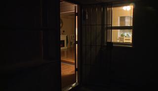 Family sees daytime burglars leaving their home