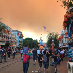Skies above Disneyland fill with smoke