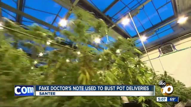Fake doctor-s note used to bust Santee pot deliveries