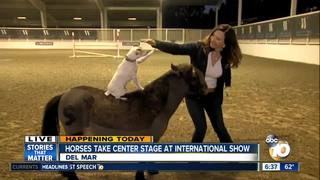 International Horse show comes to Del Mar