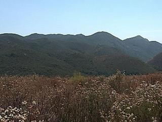 Hiker dies in Cleveland National Forest