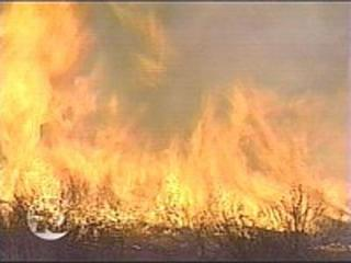 325-acre 'training fire' burns at Camp Pendleton