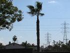Santa Anas bring 'extreme' fire danger Thursday