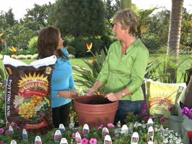 Using Organic Soil