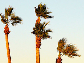 Warnings issued as high winds whip across SD