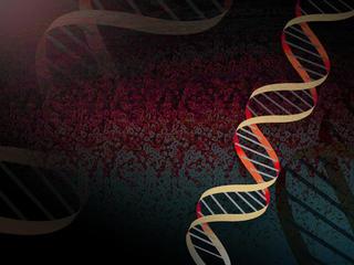 In US, scientists edit genes of human embryos