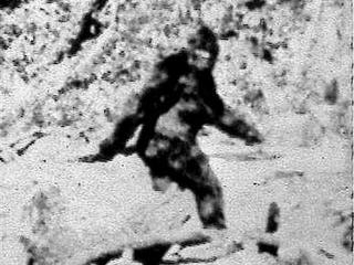 Woman sues CA for ignoring existence of Bigfoot