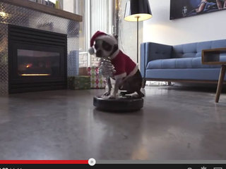 VIDEO: Dog on Roomba will brighten your holidays