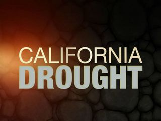 Drought: Financial assistance for landowners