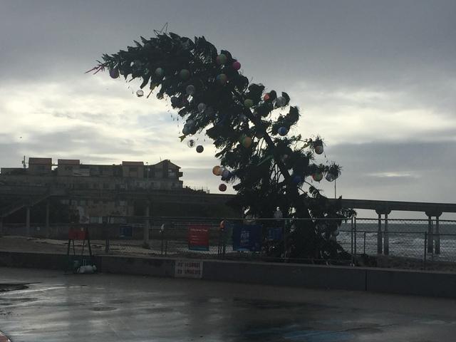 10news photo - Beach Christmas Tree