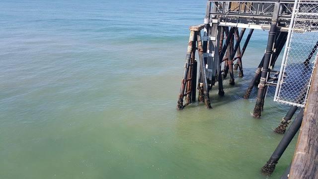 San Go Health Officials Close Imperial Beach Sline Due Sewage