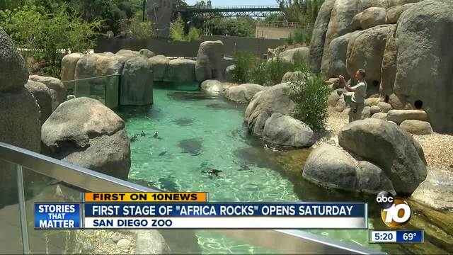 san diego zoo s africa rocks exhibit opens saturday 10news com