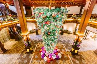 Hotel Del's Christmas Tree sparks conversation