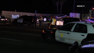 Woman killed by hit-and-run driver