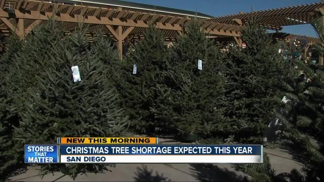 Christmas tree shortage hits San Diego