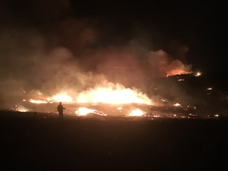 Neighbors protected neighborhood from Lilac Fire