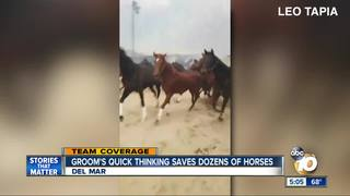 Groom's fiery horse rescue video goes viral