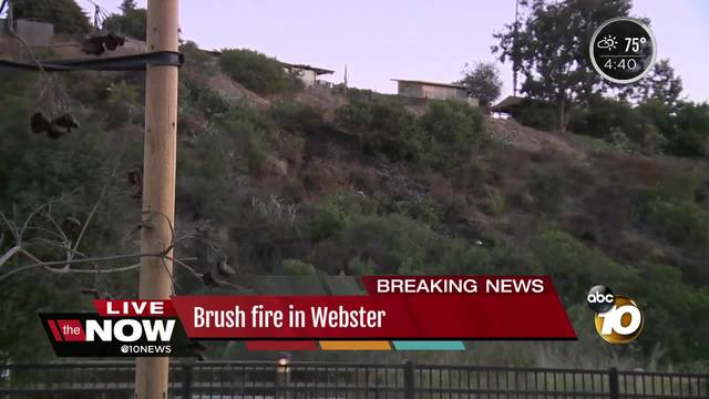 Crews knock down -suspicious- brush fire in Webster