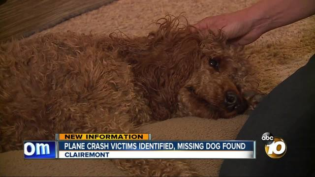 Plane crash victims identified- missing dog found