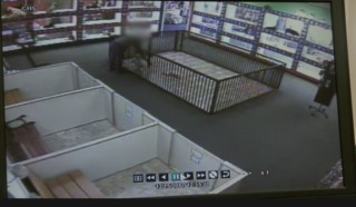 Thief steals pricey puppy from pet store