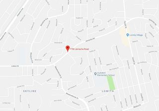 Dogs on the loose kill seven puppies in Lomita