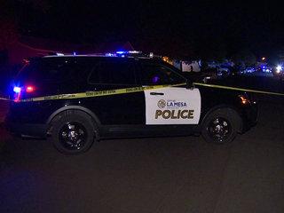 Police investigate La Mesa carjacking
