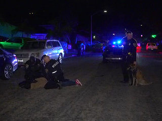 Chase in Chula Vista ends with driver's arrest