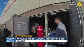 VIDEO: Officers arrest Costco thieves 'in bulk'