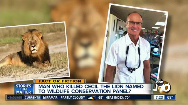 Man who killed lion named to conservation panel?