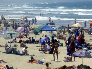 Here's how to check beach water quality