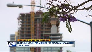 Downtown apartment boom may help housing crisis