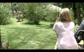 Walkabout Australia habitat opens at Safari Park