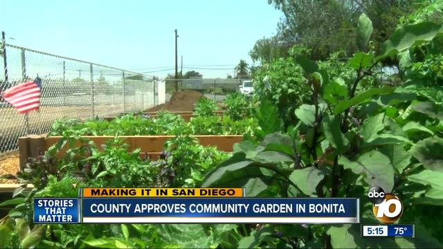 County approves community garden in Bonita, while others wait for ...