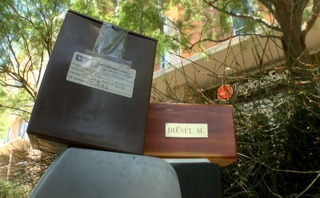 Cremated remains found in cooler on Vista road