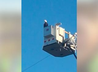 Eagle lands on Minnesota 9/11 display