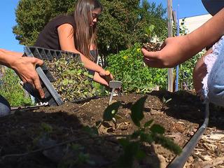 CVHS students hope grant keeps garden growing