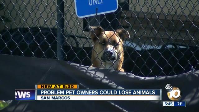 San Marcos to discipline -irresponsible pet owners-