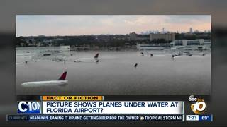 Hurricane Michael left planes underwater?