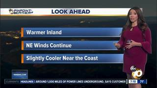 Angelica's Forecast: Dry and Warm